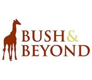 Bush & Beyond